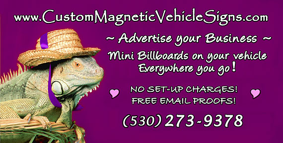custom magnetic vehicle sign