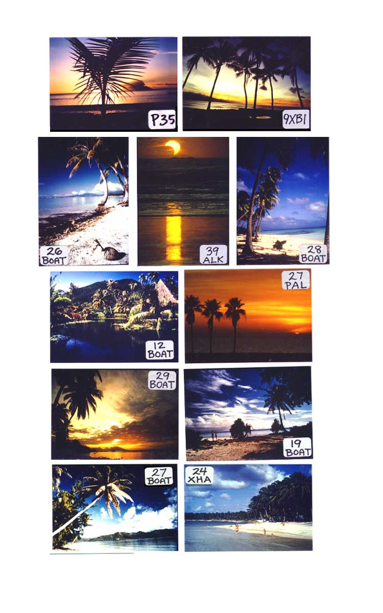 Tropical Scene Magnets